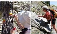 Les baliseurs à l'œuvre dans les Hautes Alpes
